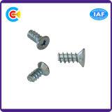 DIN/ANSI/BS/JIS Kohlenstoffstahl/aus rostfreiem Stahl galvanisierte Pflaume-Blüten-Kopf-Endstück-klopfende Schraube