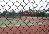5 Foot Hot Sale PVC Coated Chain Link Fence