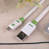 Forme de remplissage Shenzhen Facaory de câble de deux caractéristiques plates de la couleur USB