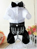 Chien robe fashion Costume Vêtements pet