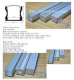 Großhandels-Streifen-Silber anodisiertes Aluminiumprofil des LED-Aluminiumstrangpresßling-LED