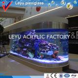 Tanque de peixes acrílico do grande tamanho feito sob encomenda