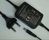 Fabrik-Preis-Cer RoHS anerkannter 5V1a 5V2a Adapter