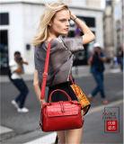 Senhora de sacos quente bolsa das mulheres da forma do ombro da venda