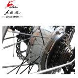 20 Châssis en alliage aluminium pliable 250W E-vélo de moteur sans balai (JSL039XH-8)
