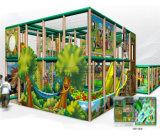 Campo de jogos interno temático da selva grande do divertimento do elogio