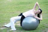 Sfera yoga/di ginnastica con la maniglia