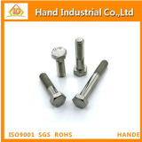 Hastelloy B3 DIN 2.4600931 tornillo hex.