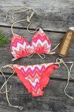 Секс Бикини цветастой печати Afrian Swimwear способа Xxx открытой горячий