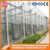 China-heißes galvanisiertes Stahlrahmen PC Blatt-Gewächshaus