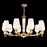 Illuminazione americana classica del lampadario a bracci del metallo di stile di nuovo disegno 2017 (SL2282-6)
