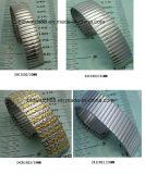 Leverancier de van uitstekende kwaliteit van de Band van het Horloge van de Lente van het Roestvrij staal