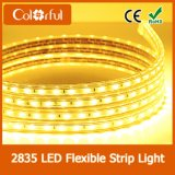 De la alta calidad iluminación de tira del brillo SMD2835 DC12V LED ultra