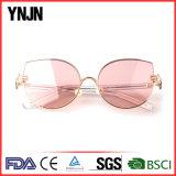 Óculos de sol do olho de gato do OEM de China do espaço livre da compra do volume de Ynjn (YJ-F83761)