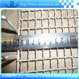 Rete metallica del BBQ usata per la griglia