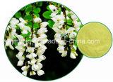Rutina y Quercetina Directas, No de la Fuente de la Fábrica del CAS: 485-35-8 Extracto de Japonica del Sophora
