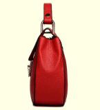 Neue weibliche Marken-Handtasche im Herbst und im Winter (BDMC144)
