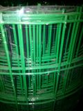Черная ПВХ покрытие оцинкованной сварной проволочной сеткой