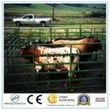 5foot*10foot에 의하여 직류 전기를 통한 강철 가축 야드 위원회는 또는 가축 위원회를 이용했다