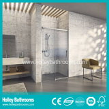 Hot Selling Hinger Shower Enclosure with Aluminium Alloy Frame (SD207N)