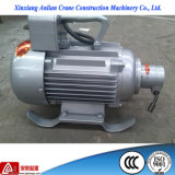 Alta qualità Electric Concrete Poker Vibration Motor con High Frequency