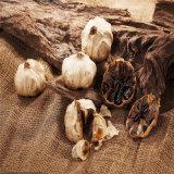 까만 마늘은을%s 가진 면역성이 있는 기능을 강화한다