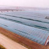 De landbouw Serre van de Plastic Film voor Groente/Vruchten