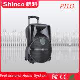 Shinco 10''Rechargebale de haute qualité chariot haut-parleur Bluetooth