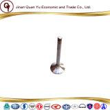 Weichai 중국 바다 디젤 엔진 출구 벨브 Vg1560050027
