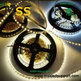 Fita LED 5050 30/60/72/84/96 medidor LED Fita LED RGB
