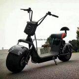 音楽スピーカーのセリウムの承認の電気スクーターを持つ2000W Harley都市ココヤシ