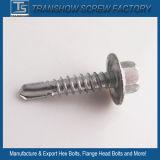 Viti Drilling del rivestimento della flangia di auto Hex organico della testa