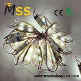 Hete het Verkopen 2 SMD 2835 Optische Lichte leiden Backlight van de Module Module