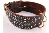 Collier en peluche en cuir Sharp Spikes Big Pit pour Pitbull SML