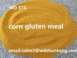 동물 먹이 단백질 60%를 위한 옥수수 글루텐 식사