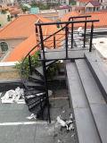Лестницы напольного песка стали углерода черные вращая в целом