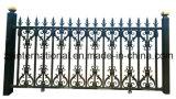 Giardino del ferro/rete fissa modellati del cancello