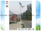 Brsgl029 Efficiency와 12V Working Voltage LED 정원 Use Solar Light