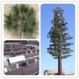 Tour de télécommunication en acier camouflée belle de palmier