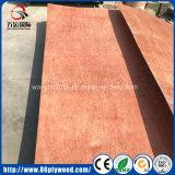 Grado 9/12/18m m Bintangor del embalaje/madera contrachapada comercial del pino/del abedul para la decoración de los muebles