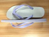 Flops Flip обыкновенных толком цветов высокого качества резиновый
