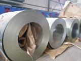 Vorgestrichener Gi-Stahlring/Blatt PPGI walzten galvanisierten Stahlring kalt