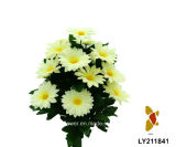 Margherita Bush (LY211841) di Plastic/Silk/artificiale fiore