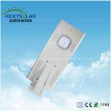 10W-100W 태양 전지판, 관제사 및 건전지 통합 태양 정원 램프를 가진 태양 LED 가로등