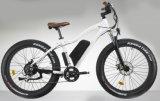 2017 جيّدة عمليّة بيع [48ف500و] إطار العجلة سمينة دراجة كهربائيّة ([تد10ز-2])