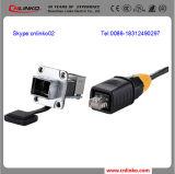 보호되는 통신망 케이블 Connectors/RJ45 모듈 Jack/RJ45 플러그