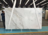 平板、タイル、カウンタートップ(YY - NM003)のための中国Arabecato Venatoの白い大理石