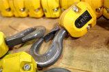 Ampliamente utilizado el gancho de alta calidad con el SGS