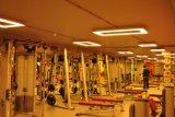LED-hängende Deckenleuchte mit unterschiedlichem Winkel-Entwurf für Projekt