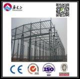 Qualität kundenspezifisches Stahlkonstruktion-Lager (BYSS018)